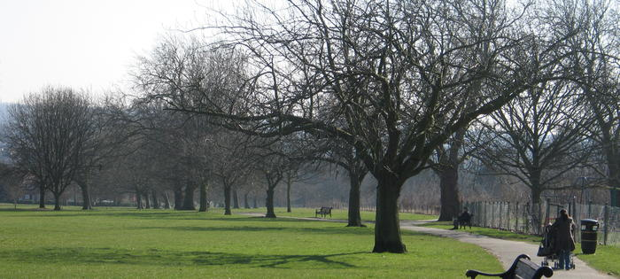 Attractive Hendon Park