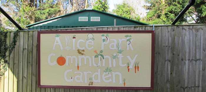 The Community Garden at Alice Park